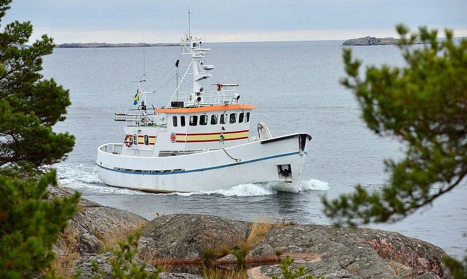 Den eventyrlystne familien Beha, som foruden de fire på billedet også tæller lillebror Alfred, sejler mod helt ukendte farvande på deres næste togt. Foto: Hannelore Dörner / TV2.