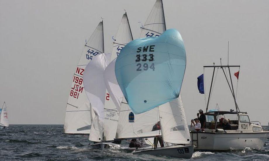 470ere ved VM i Rungsted