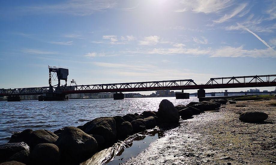 Det var her i Limfjorden at der blev sejlet for stærkt med vandscooter. Foto: Troels Lykke