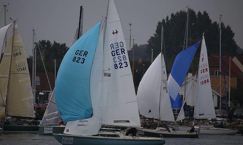 Sejlere fra blandet andet Schweiz og Slovenien tager turen til næste års Silverrudder. Foto: Troels Lykke