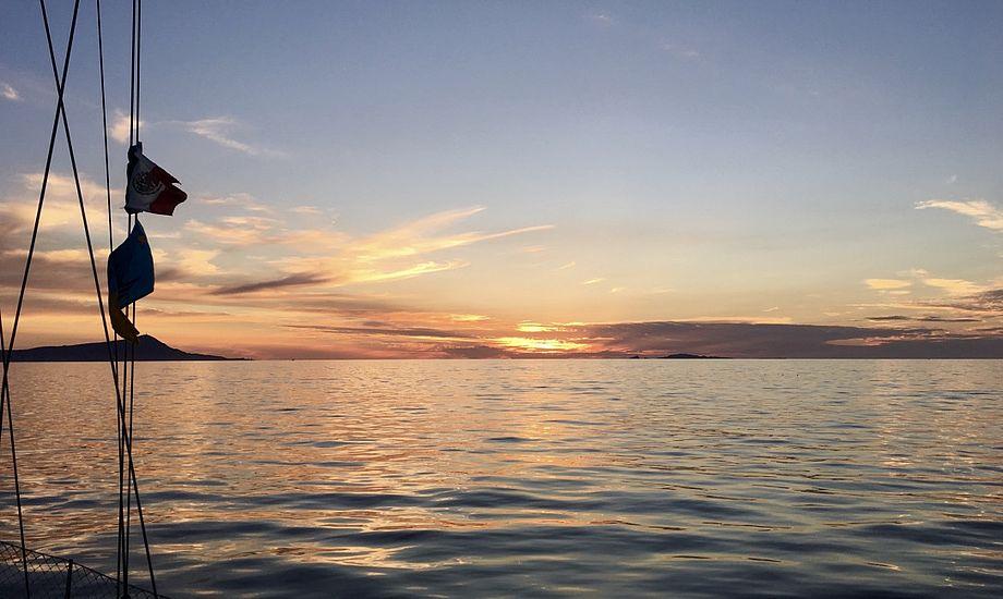 Når solens stråler forsvinder fra havoverfladen, venter en helt særlig og anderledes mørkesejlads for skipper og gaster. Foto: Sara Sulkjær