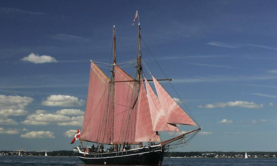 Skonnerten Halmø med den underste rig sat på Øresund. Foto: Grabowski